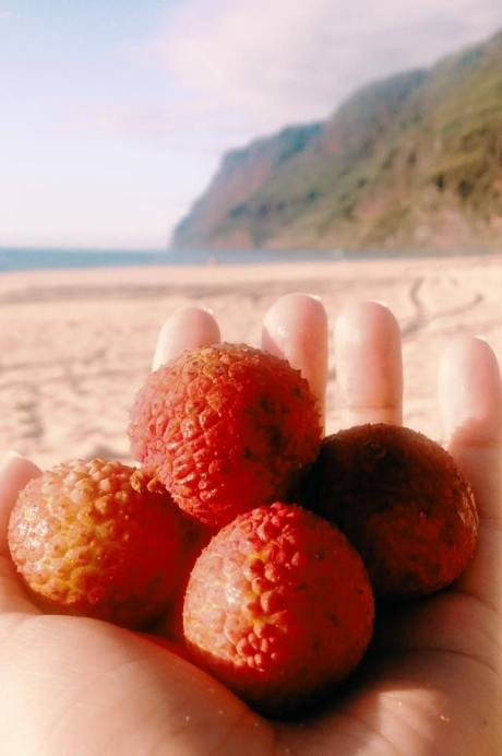 Lychee keep the day sweet.
