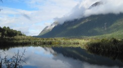We stopped at Mirror Lakes on the way to Milford Sound.